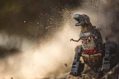 Rawr!!! (3rd-Rate Photography) Tags: grimlock transformers poweroftheprimes generations dinobot tyrannosaurusrex dinosaur robot toy toyphotography canon 50mm 5dmarkiii jacksonville florida 3rdratephotography earlware 365