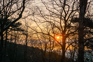 Sunrise in the Wienerwald