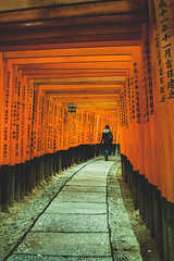 Through the forest (hermez) Tags: kyoto japan torii fushimiinari enchanting red shrine donations spiritual forest magical woman stroll lamp light orange shinto