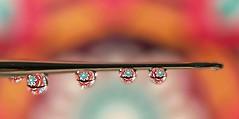 Mandala flower art (Through Serena's Lens) Tags: beautifulrealm waterdroplets weeklythemechallenge mandalaflowerart 7dwf crazytuesday drops refraction water droplets macro colorful crochetneedle bokeh