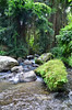 Rock Bottom Pura Gunung Kawi Temple (itchypaws) Tags: pura gunung kawi temple asia indonesia bali 2017 holiday vacation august island