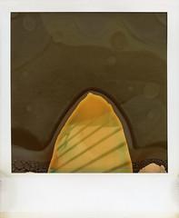 San Clemente Pier Siding (tobysx70) Tags: polaroid sx70 timezero time zero tz expired instant film 1102 san clemente pier siding orange county california ca wooden wood undeveloped patch divot edwin special sauce fail failure april fails day fppwalkingworkshop2015 fppwwiii toby hancock photography