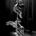 Pole Dancers ¬ 0178