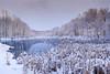 Muriel Hepner Nature Park (Dave Landry) Tags: winter northamerica flickr hiking landscapes newjersey denville unitedstates morriscounty places murielhepnerpark america us usa unitedstatesofamerica landscape