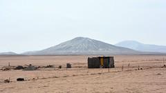 Vidas en el desierto (Miradortigre) Tags: desierto peru peruvian desert arido arena sand dry