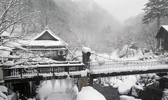 Japan's snow landscape (yagisu) Tags: tokyosnow snow japan house trees snowy winter water bridge vintage landscape