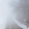 foggy ogg road (For Keep's Sake! Family Photography) Tags: fog oggroad lenexa shawneemissionpark