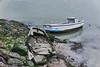 jlvill  092  Tempus fugit (jlvill) Tags: barcas barcos abandonos finales ruinas restos 1001nights 1001nightsmagiccity
