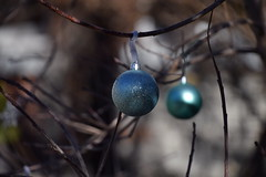 Christmas leftovers. (Bad Alley (Cat)) Tags: christmasdecorations easterdecorations trees outdoordecorations balls silver blue shiny sparkly sparkle light shadow lightandshadow dotsinspace