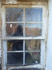 Yesterday (Julie Rutherford1) Tags: window decay curtain horseshoe scotland island lismore port ramsey house weathered glass reflection tree julie rutherford