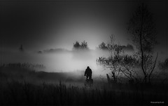 Landschaft - Heute Morgen (sw) (Pana53) Tags: photographedbypana53 pana53 naturfoto naturundlandschaftsfotografie nebel morgen biker radfahrer landschaft bäume wiese gras weg silhouette nikon nikond500 schwarzweisfotografie baum himmel sonnenaufgang feld