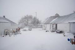 DSC_8002 (seustace2003) Tags: baile átha cliath ireland irlanda ierland irlande dublino dublin éire glencullen gleann cuilinn st patricks day zima winter sneachta sneg snijeg neve neige inverno hiver geimhreadh