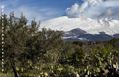 Etna da Santa Maria di Licodia (Fabrizio Zuccarello) Tags: etna sicily sicilia volcanoes vulcani italy italia nature natura geology geologia
