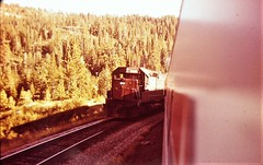 Southern Pacific SD45 locomotive form the San Francisco Zephyr on Donner Pass in 1978 4546 (Tangled Bank) Tags: old classic heritage vintage train railroads trains railways transportation north american southern pacific sd45 locomotive form san francisco zephyr donner pass 1978 4546 sp
