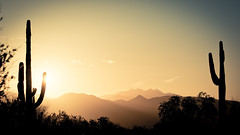 Daybreak in the Desert (PhotoGizmo) Tags: arizona desert sun sunrise sky cactus saguaro day daylight bush morning ridges peaks hills mountain