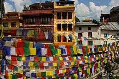 BOUDHANATH (RLuna (Charo de la Torre)) Tags: nepal asia kathmandú bhaktapur bandipur pokhara patan pashupatinath boudhanath swoyambhunath durban unesco photo canon viaje vacaciones travel trip holidays rluna rluna1982 ecologia medioambiente naturaleza nature cultura instagram flickr spotlight instagramapp photography me camera natural igers igersspain igersmadrid eos multicolor igerspain