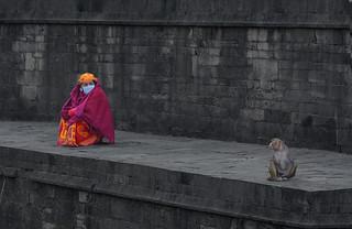 Nepali woman and monkey