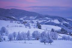 IMG_4713 (Bartek Rozanski) Tags: badenwurtemberg oberried panorama schwarzwald germany blackforest deutschland mountains winter hochschwarzwald valley village sunrise dawn house rural