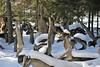 6Q3A5772 (www.ilkkajukarainen.fi) Tags: sculpture park parikkala statue patsas puisto imatra border ite taide folk art open museum kaakko itse tehty elämä happy life story amazing mahtava portrait potretti suomi suomi100 eu europa scandinavia finland finlande artworld artlife artwork outstanding uskomaton snow lumi winter talvi kansantaide raja