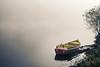 Rowing boat at river Saar (designladen.com) Tags: allemagne deutschland fluss fog germany granderégion grosregion mist nebel river rowingboat saar saarlorlux saarland sarre visitsaarland instagram ruderboot sharegermany visualvibesgermany bootimg2114 explore inexplore