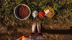 31.03.2018 (Fregoli Cotard) Tags: gardening garden onion onionbads planting plants farmer plantmama plantingonion rolnik fermier gradinar feet photo feetphoto legsphoto nakedfeet dirt sunny warm 90365 90of365 dailyjournal dailyphotography dailyproject dailyphoto dailyphotograph dailychallenge everyday everydayphoto everydayphotography everydayjournal aphotoeveryday 365everyday 365daily 365 365dailyproject 365dailyphoto 365dailyphotography 365project 365photoproject 365photography 365photos 365photochallenge 365challenge photodiary photojournal photographicaljournal visualjournal visualdiary