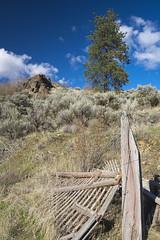 _DSF3543 (jiggumbob) Tags: thorntoncanyon grandcoulee washingtonstate fence fencepost