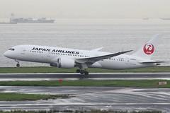 JL B788 JA835J (EddieWongF14) Tags: japanairlines jal boeing boeing787 boeing7878 b787 b788 787 788 7878 ja835j hnd rjtt tokyointernationalairport hanedaairport