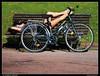la carrera soñada (wuploteg1) Tags: bici cycle bicicleta parque doña casilda iturrizar parkea parc bilbo bilbao vizcaya bizkaia país pais vasco euskalherria euskadi basque country spain