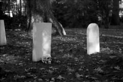 Contaflex_041218_12 (Mark Dalzell) Tags: zeiss ikon contaflex super bc 35mm slr camera ferrania p30 80 iso film xtol bw black white graveyard halloween skull