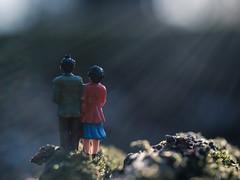 Hansel & Gretel Heading Into the Woods (Jessie Bondia) Tags: macromondays macro mondays monday hanselandgretel hansel gretel mini minifigures toys bokeh fairy tale tales fairytale fairytales onceuponatime