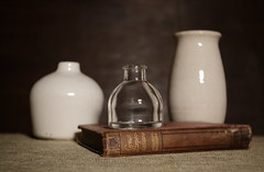 Great Expectations (N.the.Kudzu) Tags: home tabletop stilllife book pottery bottle canon70d lensbabyburnside35