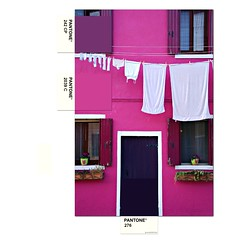 colors of the world - burano (italy) (bloodybee) Tags: burano venice venezia italy house building facade door window hanginglaundry laundry pink fucsia pantone cards colors colormatch match