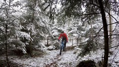 A Tiny Dusting (29in.CH) Tags: winter snow fog fatbike ride 18032018 trail forest