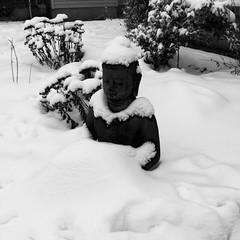 The black Buddha #buddha #statue #lawnornament #blackandwhitephoto #goth #Gothic #gothart #gothicart #photography #photo #photoediting #vintage #eerie #oldphoto #art #beautiful #creative #creativity #daringgreatly (muchlove2016) Tags: buddha statue lawnornament blackandwhitephoto goth gothic gothart gothicart photography photo photoediting vintage eerie oldphoto art beautiful creative creativity daringgreatly