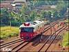 Wijayakusuma (Madya Ramadhan Putra) Tags: cicalengka jawabarat indonesianrailways indonesianrailfans indonesia keretaapiindonesia keretaapikita kereta semboyan35 kais wijayakusuma tr train railfans sepur dipolokomotifmojosari