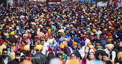 Vaisakhi Celebration in Surrey BC, 21 April 2018 (PhotoDG) Tags: 2018vaisakhicelebration surreybc vaisakhi celebration surrey bc people parade color crowd baisakhi vasakhi festival sikhism hinduism culture metrovancouver fraservalley