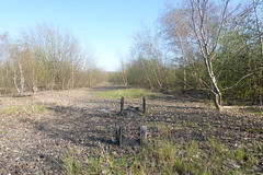 Old railway trackbed at Catcliffe, Sheffield  (former SDR route)   April 2018 (dave_attrill) Tags: sleepers ballast groundwork april 2018 catcliffe sheffield railway line disused trackbed remains goods sdr sheffielddistrictrailway southyorkshire