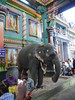 Arulmigu Manakula Vinayagar Temple (chipple) Tags: india tamilnadu pondicherry puducherry