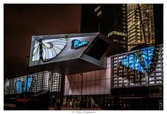 Luminale EZB 11_web (vschh) Tags: luminale frankfurt germany ezb european central bank light show night shots canons eos 70d