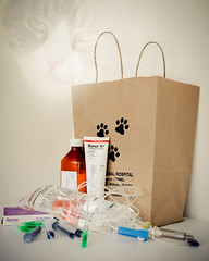 ODC - The Last Thing You Bought (lclower19) Tags: odc thelastthingyoubought wookie cat medications green blue brown