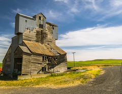 Abandoned Granary, The Palouse (Mr. Ansonii) Tags: nikon d3300 bluesky green yellow barn abandoned building washington countryside palouse thepalouse abandonedbarn pacificnorthwest summer sunny ニコンカメラ 青空 緑色 黄色 畑 建物 ワシントン州 田舎 パルス 西海岸 夏休み 晴れる アメリカ granary