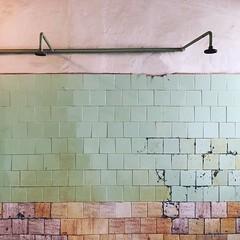 KGB Prison Showers (David Abresparr) Tags: vilnius lithuania litauen kgb prison fängelse dusch shower duschrum kakel tiles