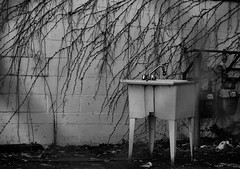 abandoned (annapolis_rose) Tags: vancouver backalley sink abandoned object vines bw