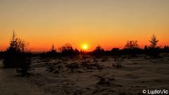 Coucher de soleil Fagnard (Lцdо\/іс) Tags: fagnes fagnard hautefagnes eifel sun sunset winter 2018 paysage landscape décor belgique belgium belgie belgian beauty snow neige lцdоіс waimes malmedy jalhay