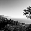Typical View (Jeremy Brooks) Tags: bw blackwhite blackandwhite california carmelvalley landscape montereycounty nature usa water iphone bigsur unitedstates us