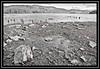 """Derwentwater..."" (NikonShutterBug1) Tags: nikond7100 nature spe smartphotoeditor landscape derwentwater blackandwhite keswick 7dwf tamron18400mm sundaylights blackwhitephotos"