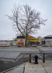 Mets Willets Point, Queens NYC (ChrisGoldNY) Tags: chrisgoldphoto chrisgoldny chrisgoldberg sonyalpha sonya7rii sonyimages sony newyork nyc newyorkcity albumcover bookcover chopshop queens flushing overcast exterior graffiti streetart