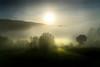 Néboa en Carcacía (Leon F. Cabeiro) Tags: sony a7r ii a7rii fe 24105 carcacia lampai herbon teo galiza galicia fog neboa niebla