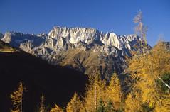 Marmolada dalla Val del Torcol (Mazariol) Tags: marmolada montagna