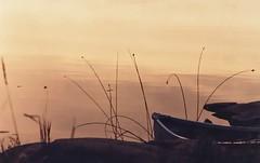 Canoe (evening) (rgdaniel) Tags: ontario canada beautiful geotagged georgianbay canoe killarney 1989 killarneyprovincialpark interestingness162 i500 geolat45991834 geolon81418905